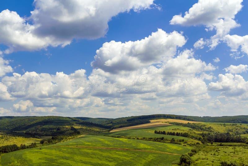 在小山的绿色领域在与松的云彩的蓝天下 库存照片