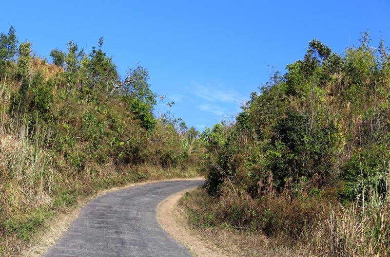 在小山的路在孟加拉国 免版税库存照片