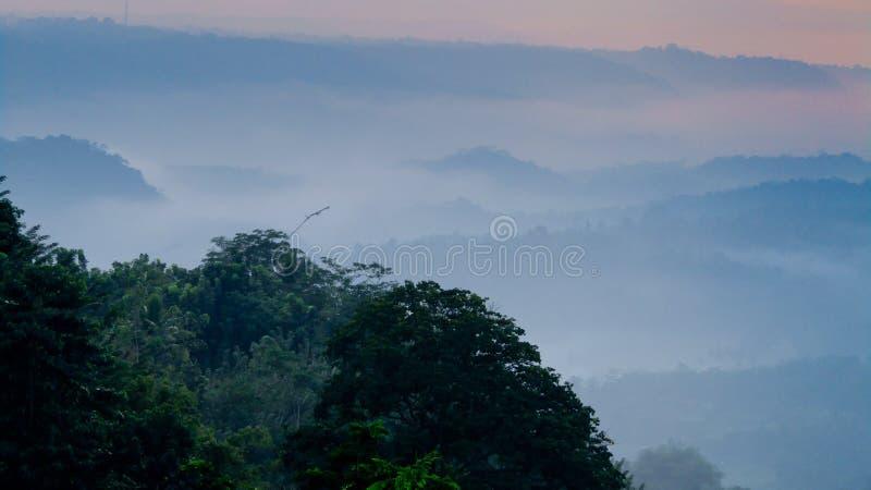 在小山顶的早晨 免版税库存照片