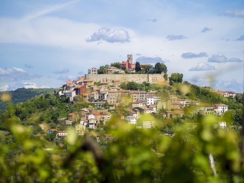 在小山顶部的城市莫托文在Istria 库存图片