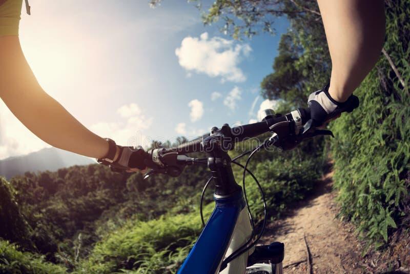 在小山顶部的骑马自行车 免版税图库摄影