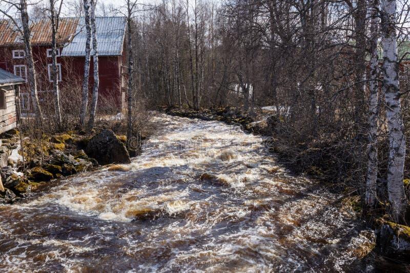在小河中融解,穿过村庄,两侧都有桦树 图库摄影
