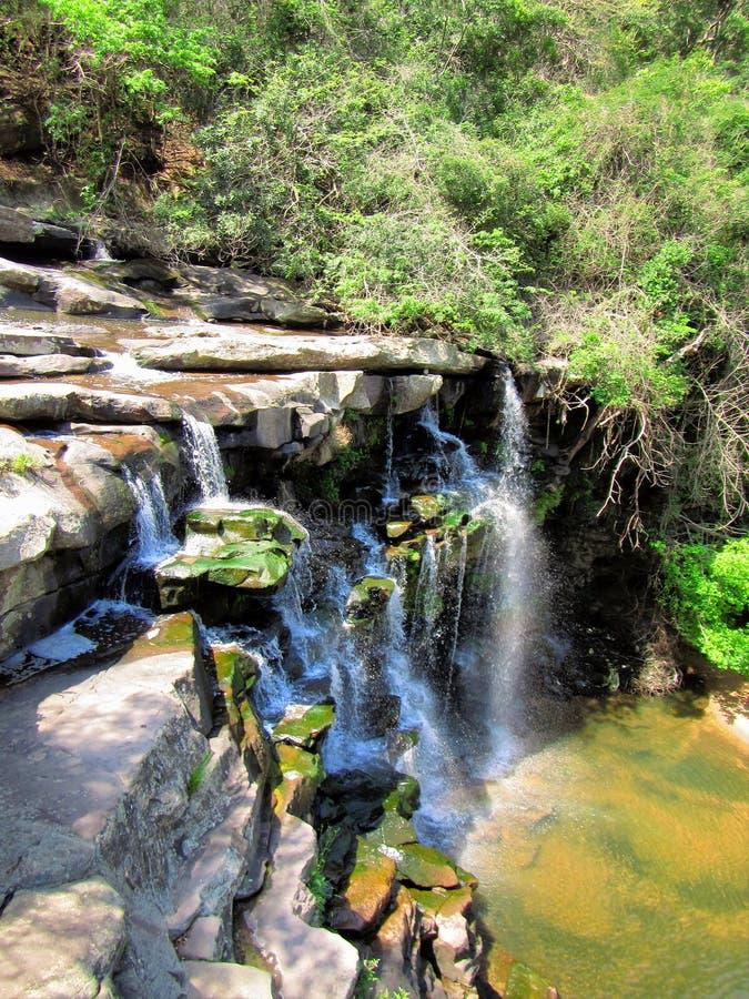 在小河的瀑布 免版税库存照片