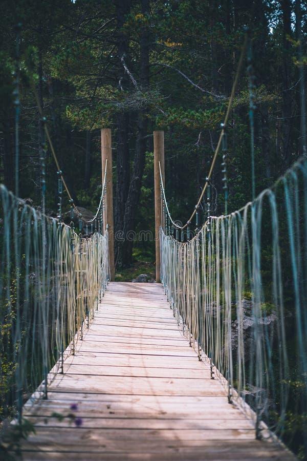 在小河透视射击的索桥 免版税库存照片