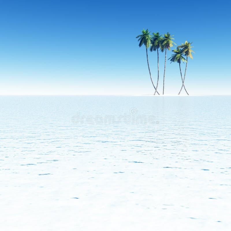 在小海岛上的可可椰子 免版税图库摄影