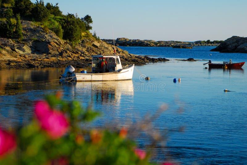 在小海湾的小船,纽波特,罗德岛州 免版税库存照片