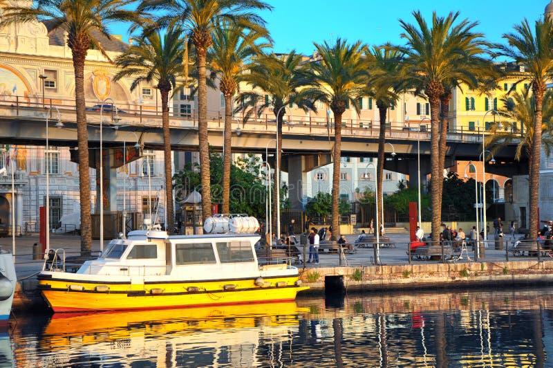 在小游艇船坞的反射小船有棕榈树和大厦的在背景,热那亚,意大利中 库存照片
