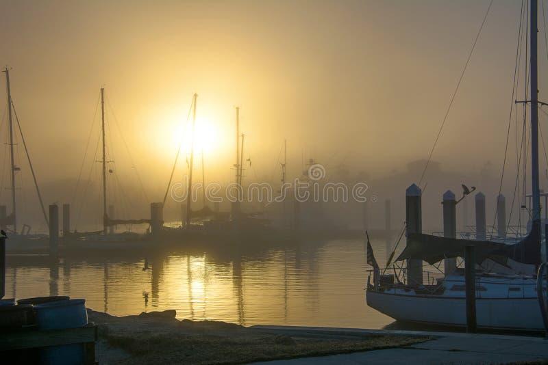 在小游艇船坞的有雾的早晨 免版税库存照片