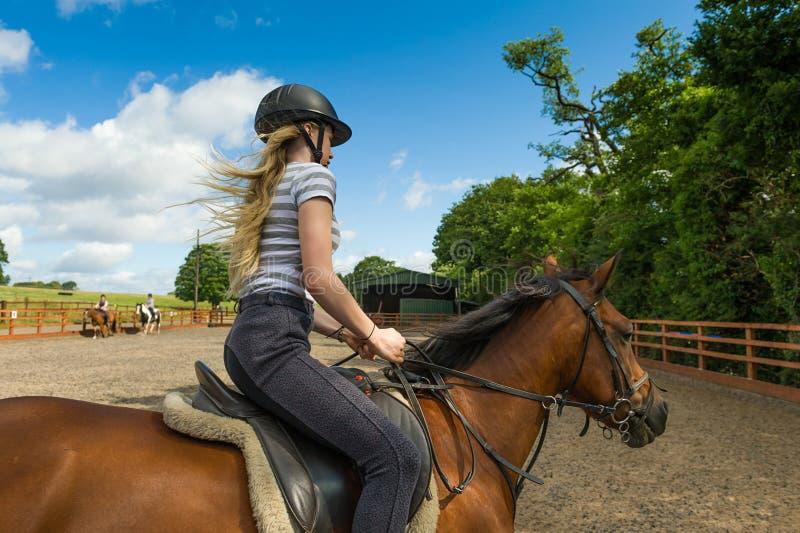在小牧场的马骑术 图库摄影