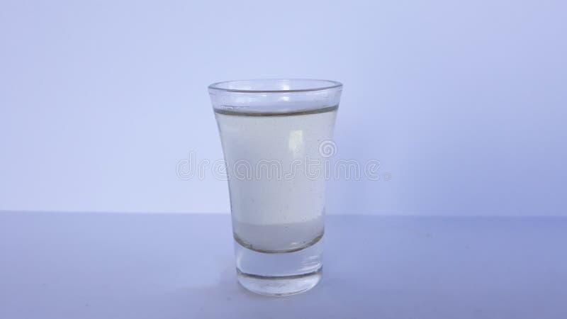 在小玻璃的李子任何烈酒 库存图片