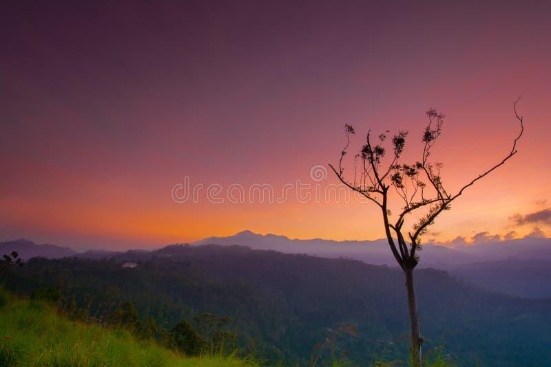 在小的亚当斯峰顶的美好的日出在埃拉,斯里兰卡 库存图片
