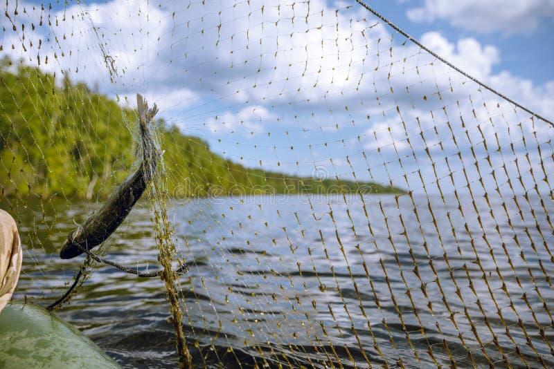 在小船的捕鱼网 库存照片
