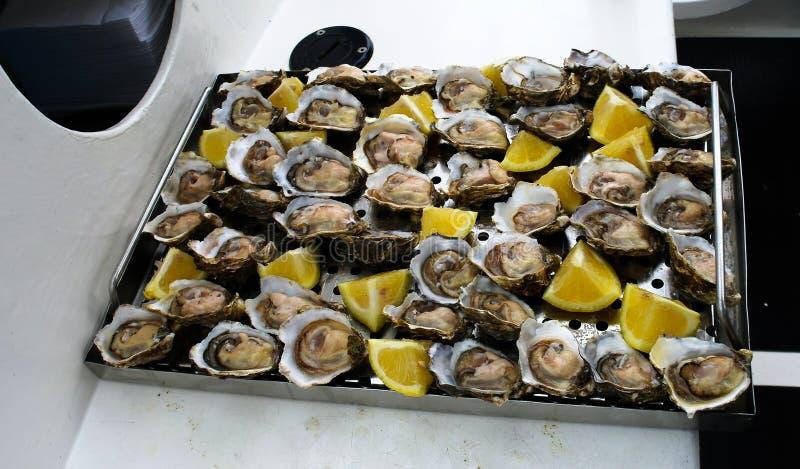 在小船的新鲜的被打开的牡蛎在Walvis咆哮,纳米比亚 免版税库存照片