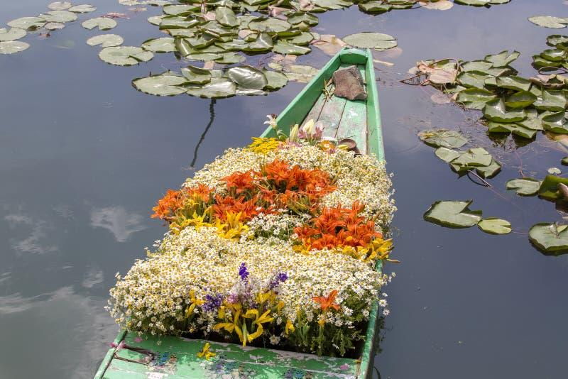 在小船的花在浮动市场上在Dal湖的早晨在斯利那加,印度 库存图片