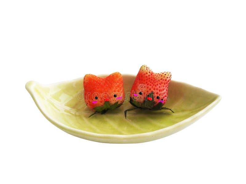 在小船的草莓猫 免版税库存照片