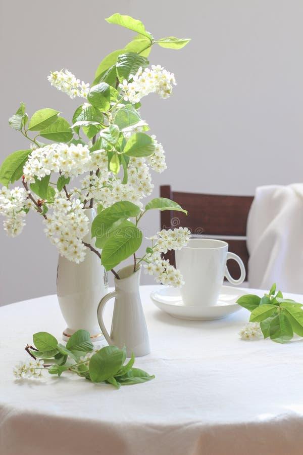 在小花瓶和一杯咖啡的白色鸟樱桃树绽放在一张白色桌上的 免版税库存照片
