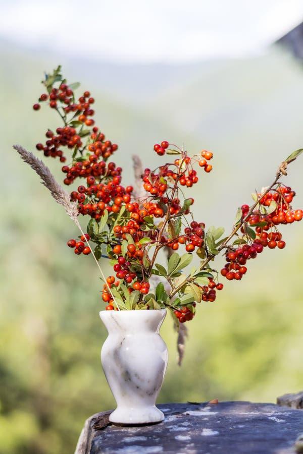 在小花瓶的美丽的红色秋天花 免版税库存图片
