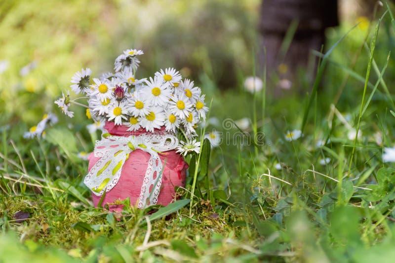 在小装饰花瓶的美丽的雏菊花 库存照片