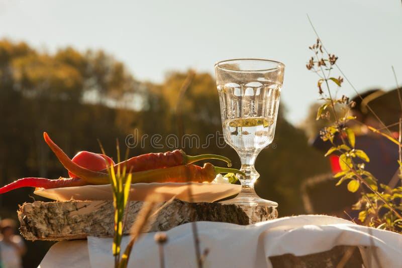 在小玻璃的俄国伏特加酒 免版税图库摄影