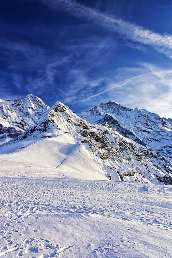 在少女峰地区的瑞士高山峰顶在冬天 库存照片