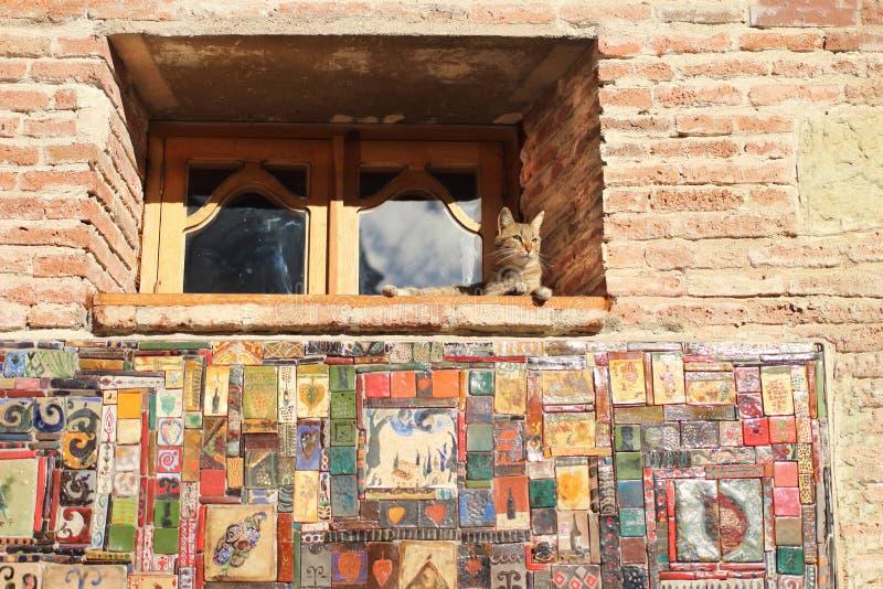 在尖沙咀钟楼的窗口的猫在第比利斯市,乔治亚 图库摄影