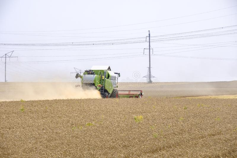 在尘土俱乐部的收割机在麦子收获的工作在一个巨大的领域的在夏天 因此,面包诞生发生 库存照片