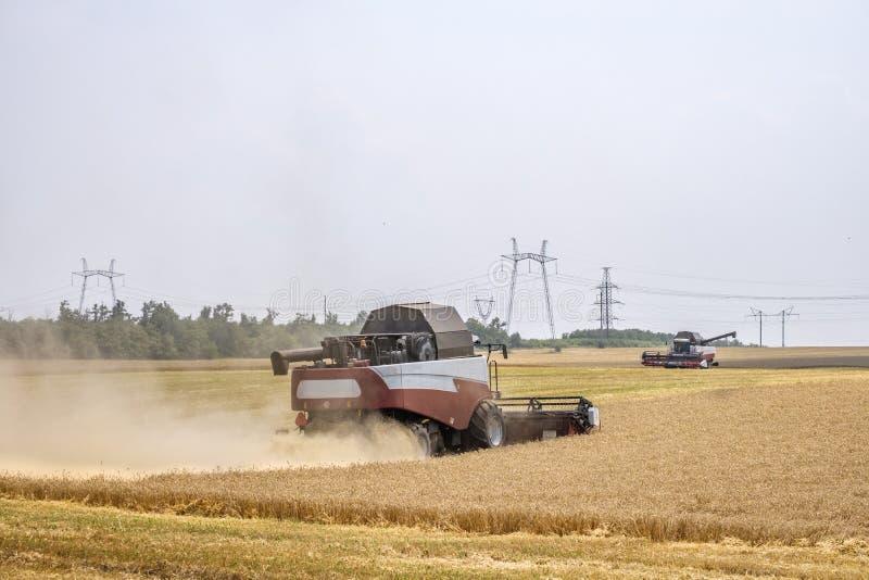 在尘土俱乐部的收割机在麦子收获的工作在一个巨大的领域的在夏天 因此,面包诞生发生 库存图片