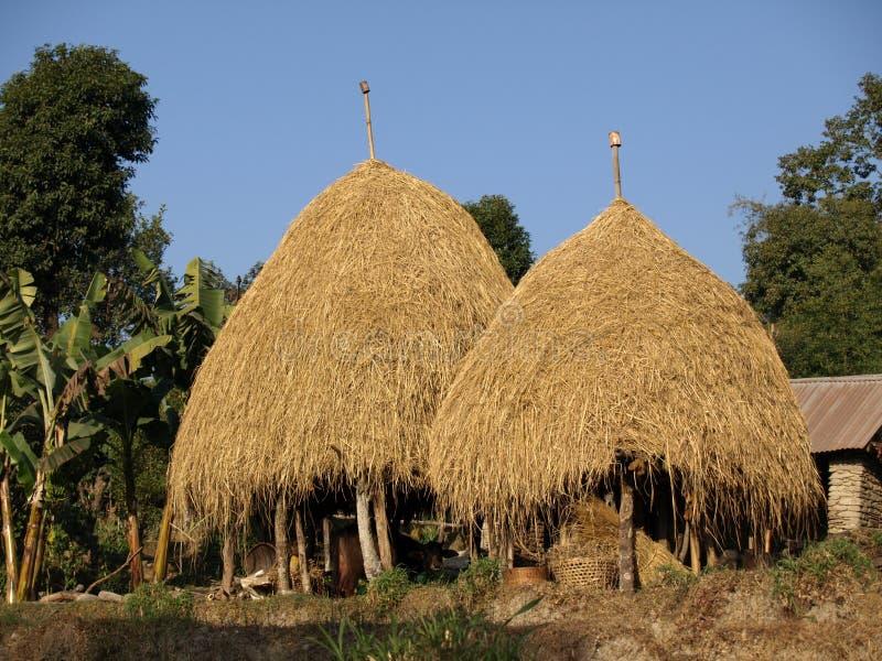 在尼泊尔存储的秸杆干草 库存照片