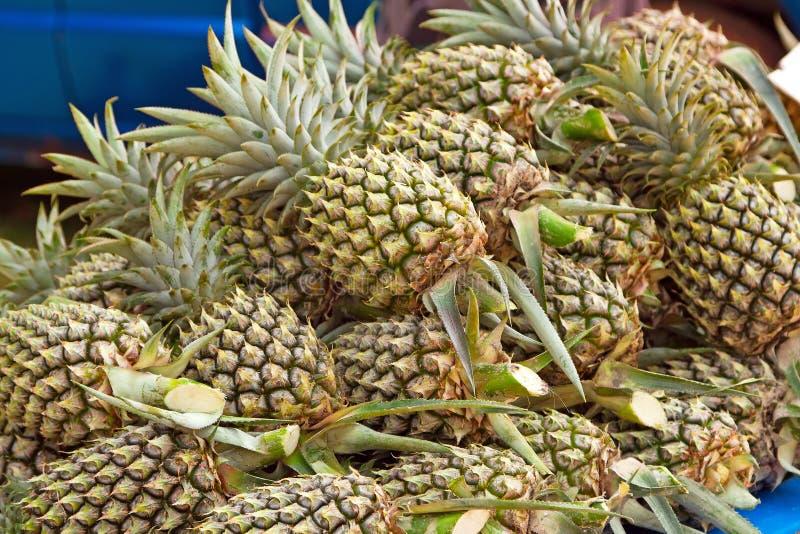 在局部市场上的菠萝 库存照片