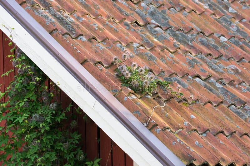 在屋顶顶面neding的维护的黏土瓦片 库存图片