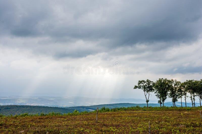 在山上面的太阳射线 图库摄影