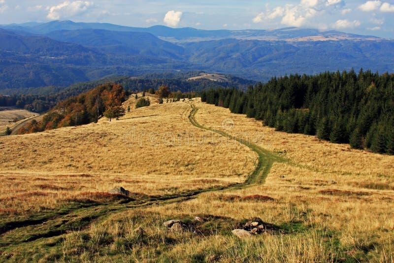 在山下的路 免版税库存照片
