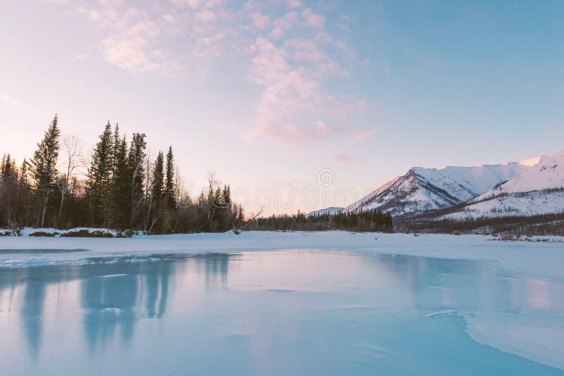 在山和冻湖的冬天风景在雅库特,西伯利亚,俄罗斯 在早晨光的浅粉红色的云彩 图库摄影