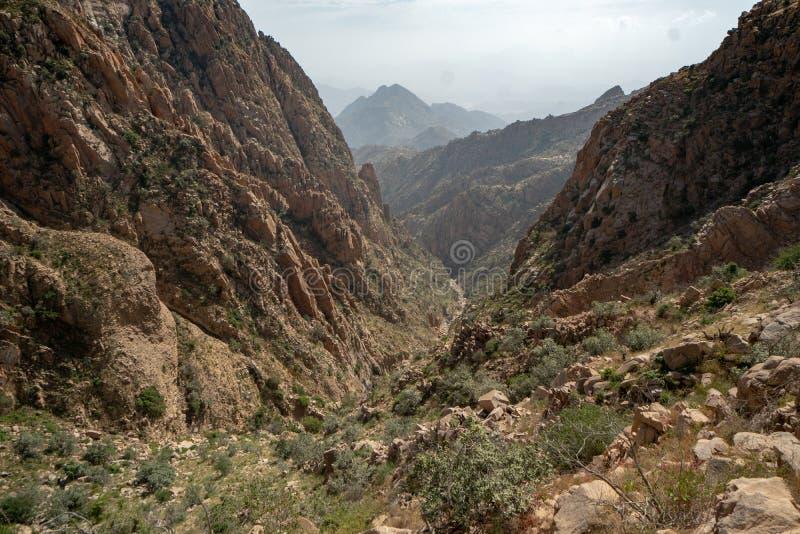 在山和谷的风景看法在沙特阿拉伯的Taif地区 免版税库存图片