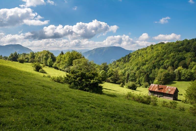 在山坡牧场地的农夫瑞士山中的牧人小屋 免版税库存照片