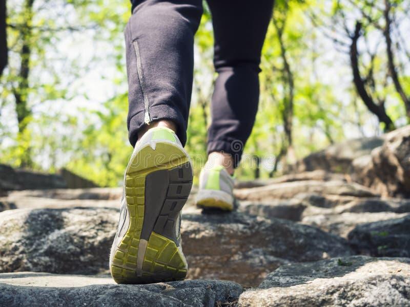 在山室外旅行冒险的妇女供徒步旅行的小道 免版税库存照片
