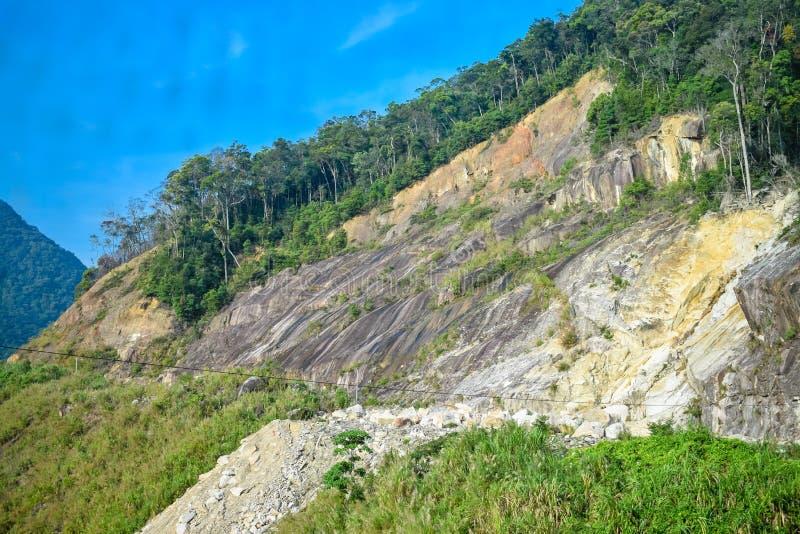 在山峭壁的山崩与密林的 图库摄影