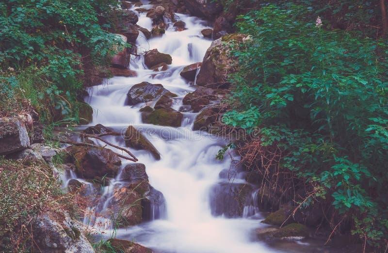 在山河的瀑布在五颜六色的森林里 图库摄影