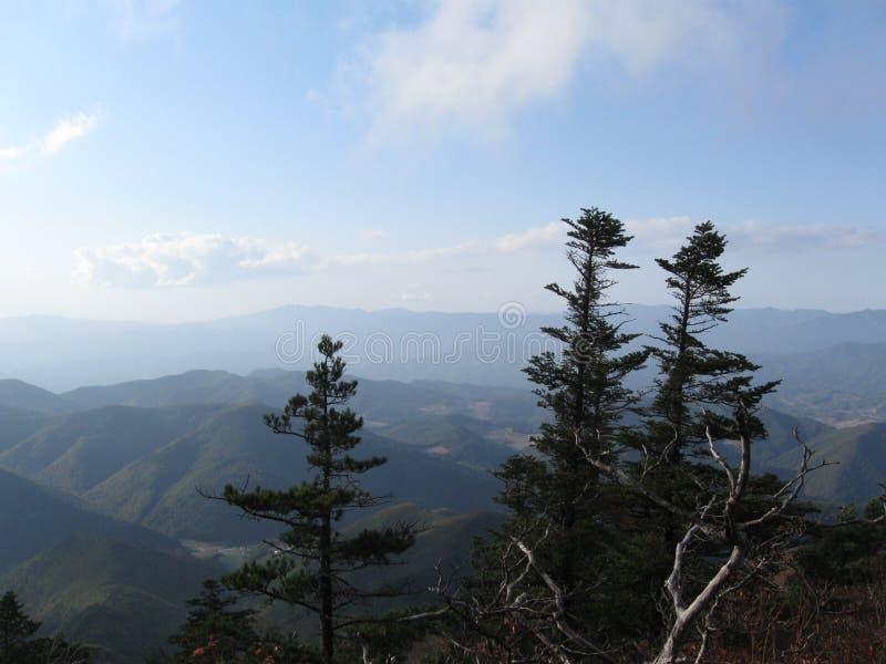 在山清扫的风 库存照片