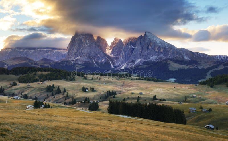 在山牧场地环境美化并且锐化, Alpe di Siusi,白云岩 库存照片