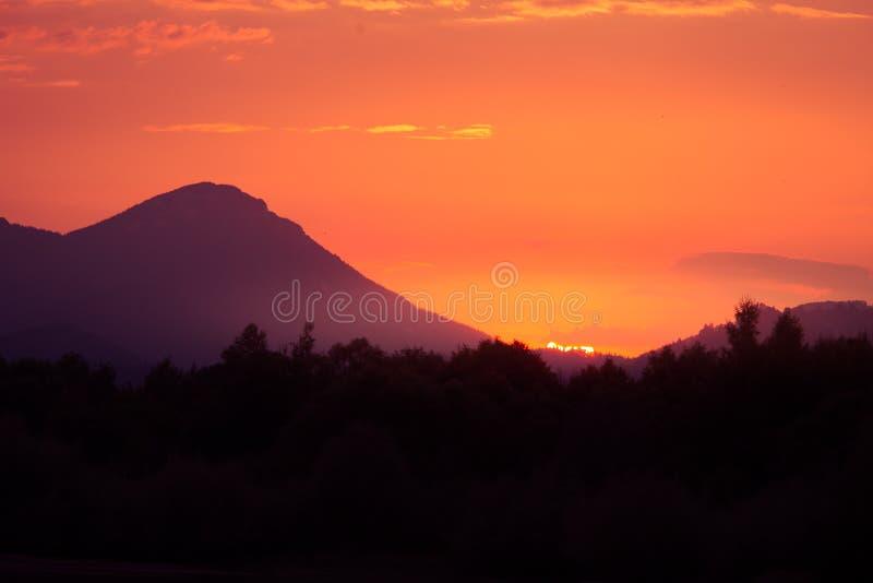 在山的一个美丽,五颜六色的日落,湖和森林紫色口气的 抽象,明亮的风景 库存照片