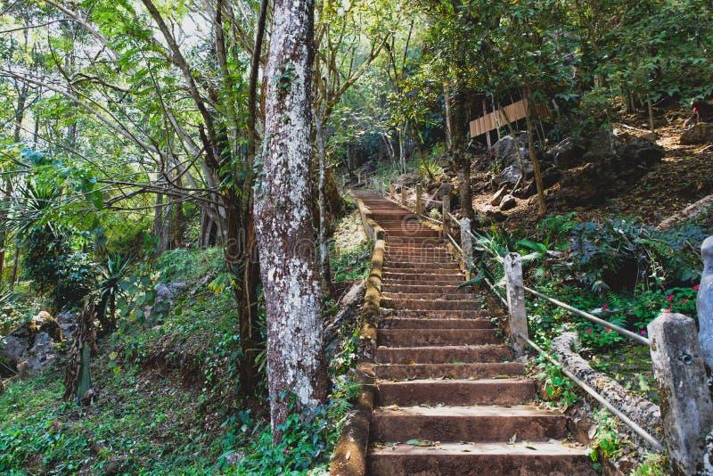 在山的一层石楼梯 库存图片