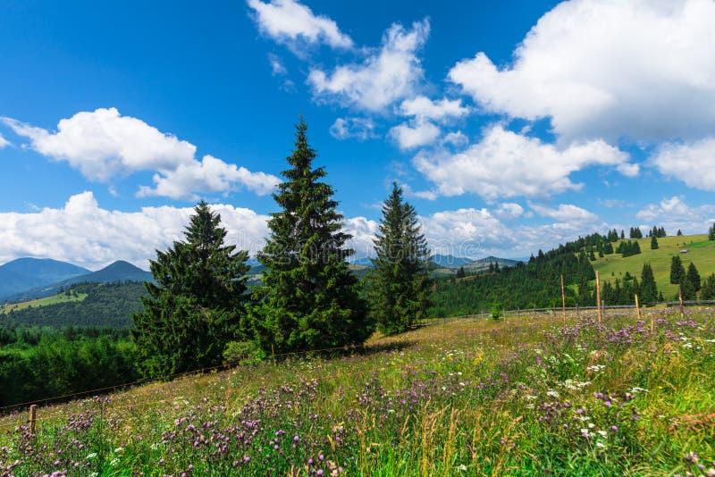 在山的云彩在夏天 图库摄影