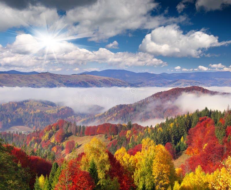 在山的五颜六色的秋天早晨。 库存图片