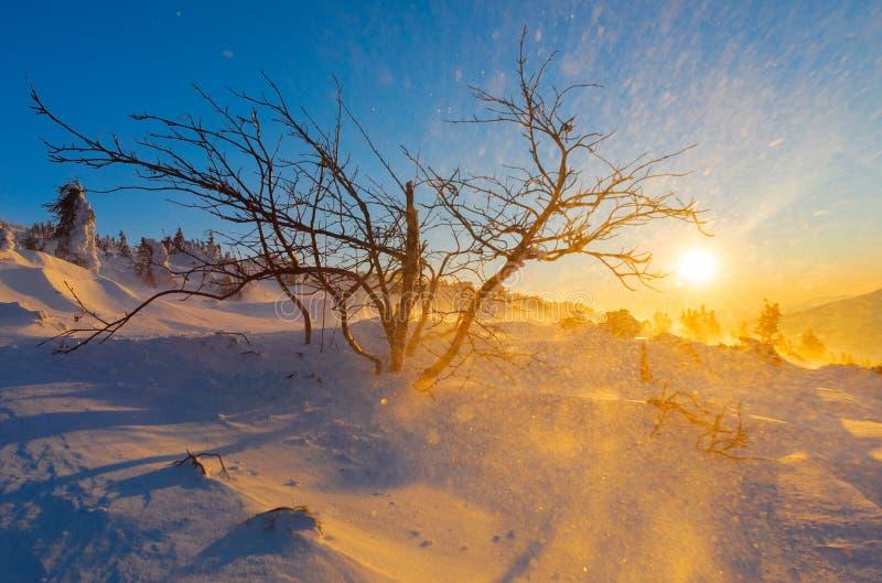 在山的冬天日落与暴风雪 库存照片