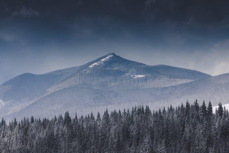 在山的冬天横向 高加索覆盖dombaj高山 严重的天空 积雪的森林看法  免版税图库摄影