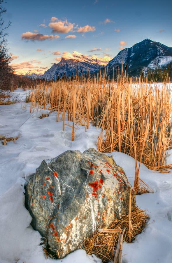 在山的冬天 图库摄影
