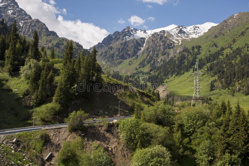 在山的夏天风景 免版税图库摄影
