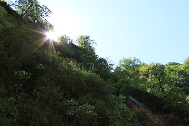 在山的太阳 免版税图库摄影
