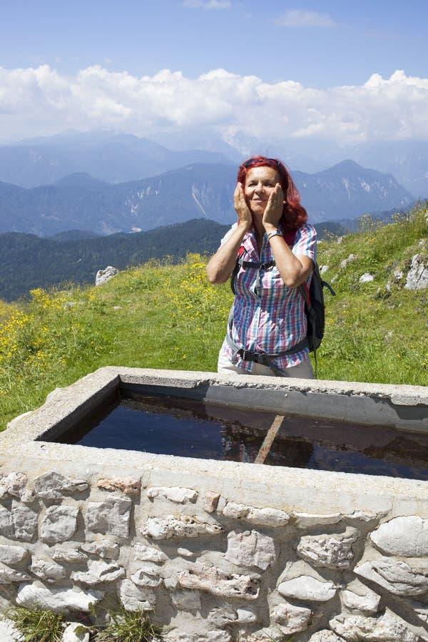 在山的妇女老牛刷新的上流 图库摄影